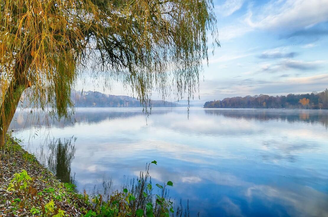 Baldeneysee in Essen neben dem See sind Bäume und eine grüne Wiese