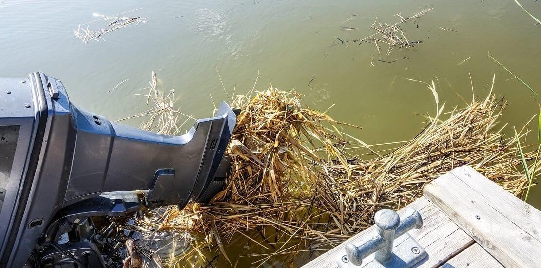 Den Bootspropeller von Plastik und Dreck im Wasser befreien