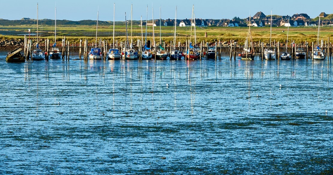 Segelboote an einem Steh bei Sylt