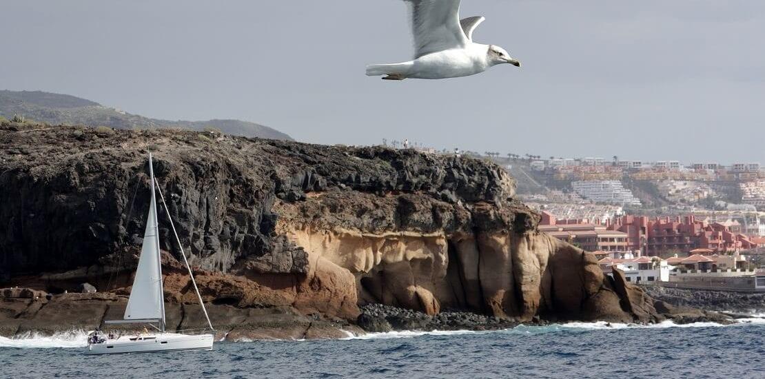 Kanarische Inseln: Segeln im ewigen Sommer