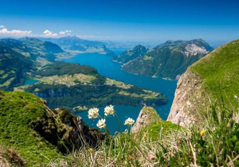 Der Vierwaldstättersee: Segeln zwischen Fjordlandschaften inmitten der Schweiz