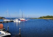 Flachwasser oder Ostsee – Rügen mit abwechslungsreichem Reviercharakter