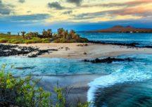 Galapagosinseln: Segelnd auf Darwins Spuren