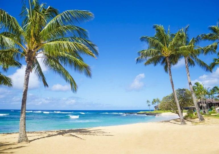 Hawaii erkunden mit dem Segelschiff