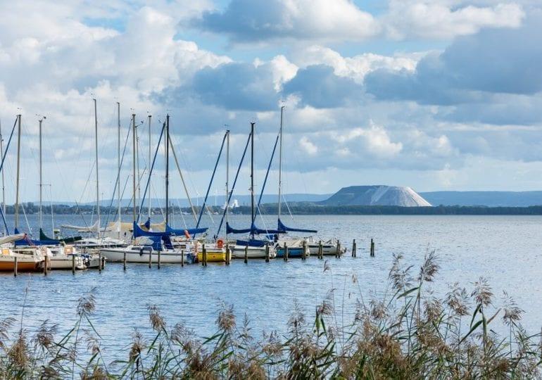 Segler-Paradies am Steinhuder Meer